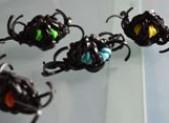 Araignée en élastiques