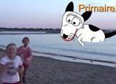 Gymnastique au bord de la mer